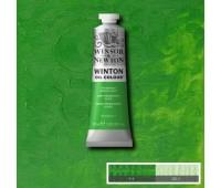 Краска масляная Winsor Winton Oil Colour, 37 мл, № 483 Перманентный зеленый светлый арт 1414483