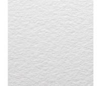 Бумага акварельная Canson холодного пресования Moulin du Roy, 640 гр, 56х76 см арт 0014-792