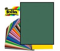Картон Folia, Photo Mounting Board 300 гр, 50x70 см №58 Fir green (Темно-зелений)